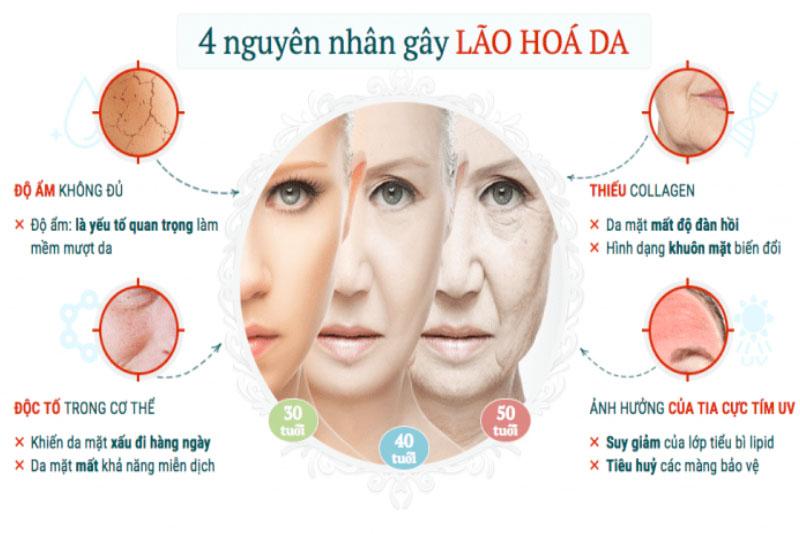 Một số nguyên nhân tác động gây nên tình trạng lão hóa da